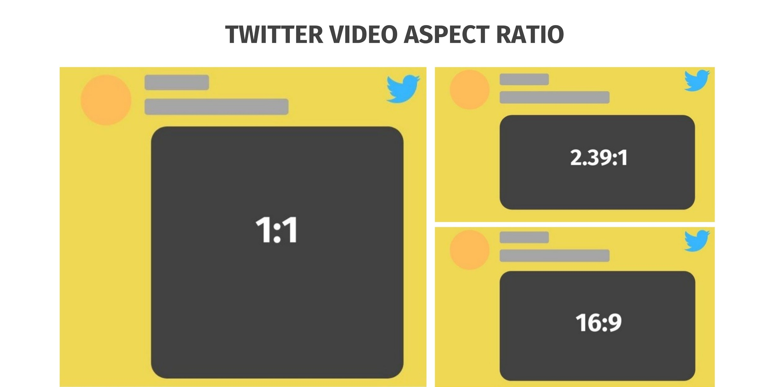 Twitter Video Requirements: Twitter Video Aspect Ratios