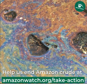 How Amazon Watch is Inspiring Action with Video Storytelling